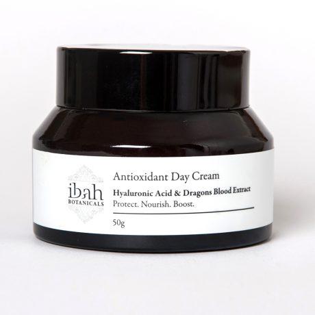 Anti oxident Day Cream-natural organic vegan skin care Australia 02 42687 2865